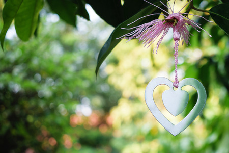 Silver heart hang on a tree with love