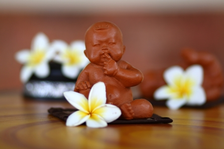Frangipani flowers. Clay dolls photo