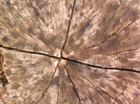 colour: Wooden