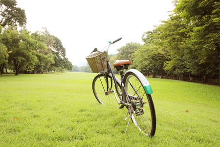 red  green: Bicycle on the green grass at park