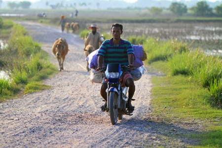 Nakhon Si Thammarat, Thailand - FEBRUARY 18, 2011 : A local farmer transport bags of hay on his motorbike. Stock Photo - 16943193