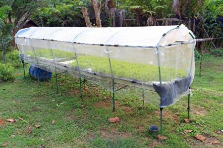 krabi: Fattoria idroponica a Krabi, Thailandia