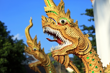 Naga statues on staircase of an entrance at temple, Krabi province, Thailand photo