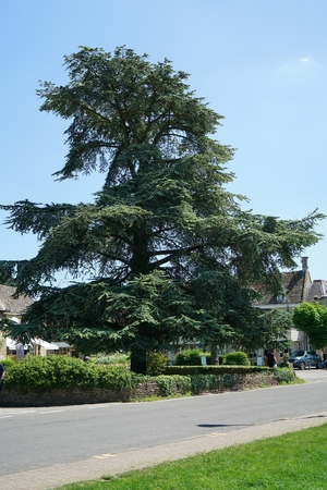 picturesque: High street of Bourton on the water