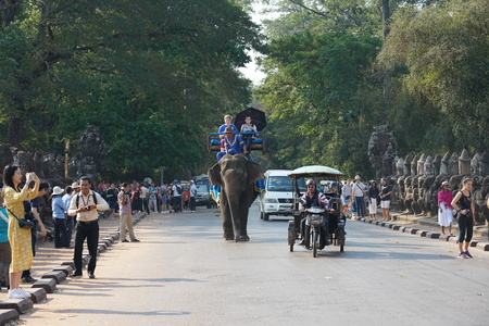 Siem Reap, Cambodia-Januay 11, 2019: Tourists pass the south gate of Angkor Thom on an elephant
