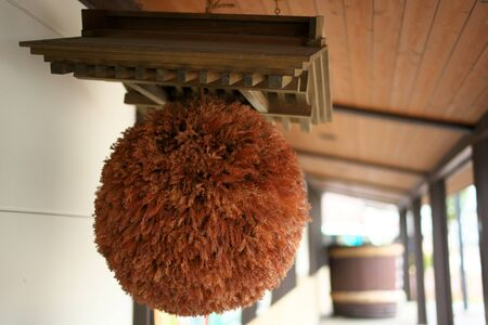 Akita, Japan-October 4, 2019: Sugidama, ball made from sprigs of Japanese cedar, traditionally hung in the eaves of sake br eweries Stok Fotoğraf