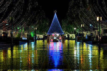 Tokyo,Japan-November 22, 2019: Christmas illuminations and ornaments in Japan