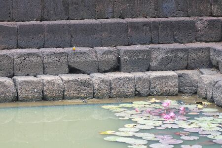Buriram,Thailand-December 8, 2019: A kingfisher and Lotus pond at Prasat Muang Tam in Buriram, Thailand