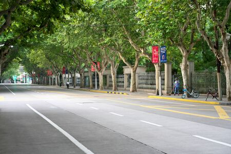 Shanghai,China-September 13, 2019: The Former Concession With Platanus Trees near Huahai Road in the Morning in Sh anghai, China