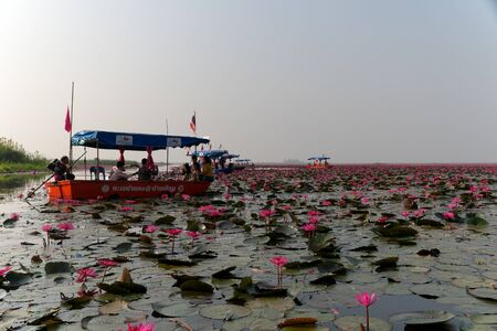 Udon Thani,Thailand-January 22, 2020: Boats on Red Lotus Lake or Talay Bua Daeng in Udon Thani, Thailand