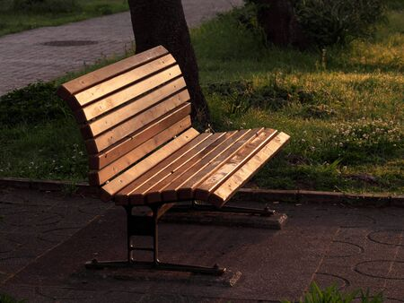 Bench in the morning light in a park