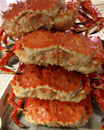 Big Boilled Red King Crabs Sond at Sapporo Nijo Market. Each crab costs around 写真素材