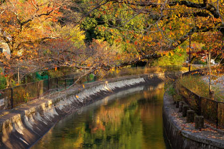 A canal connecting Lake Biwa and Kyoto city flowing in Yamashina area in autumn. 写真素材