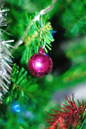 Christmas decoration show christmas celebrate photo