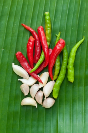 ingradient: chilli and garlic  on leaf show food ingradient concept