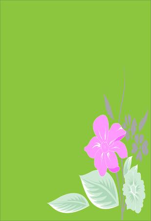 pink flower: Pink flower on green background