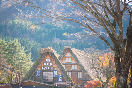 Shirakawa-go, Japan - November 15, 2018: Traditional gassho-zukuri house in Shirakawa-go,Japan.Shirakawa-go is World Heritage Sites located in Gifu Prefecture, Japan
