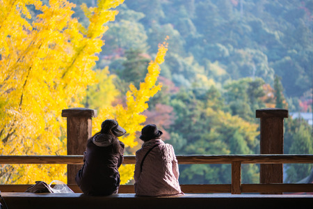 Tourist to see Floating torii gate of Itsukushima Shrine and see ginkgo leaves at Miyajima island Hiroshima, Japan 版權商用圖片