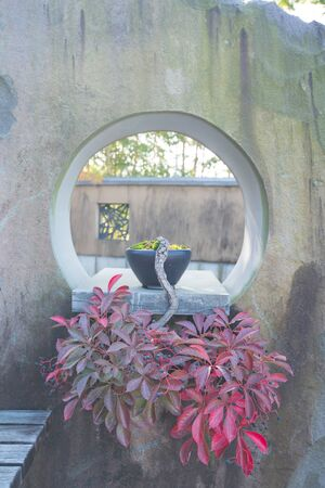 Japanese bonsai tree in Omiya bonsai village at Saitama, Japan