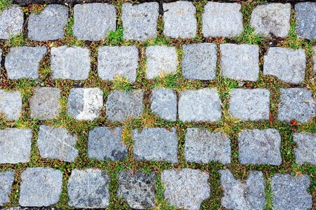 Wall texture of castle fortress in Dubrovnik old town, Croatia having green grass