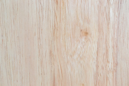 Texture of wood , wood background photo
