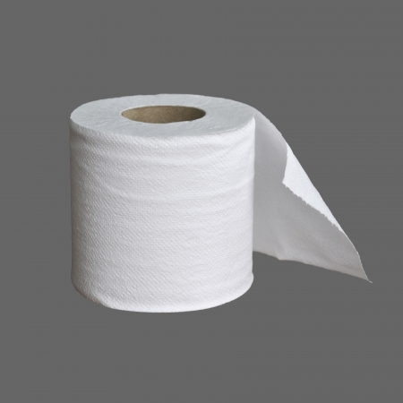 toilet paper on gray background photo