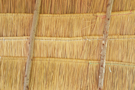 close up of grass or thatched roof