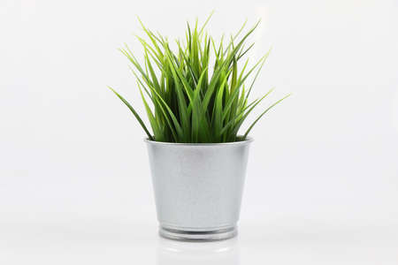Artificial green grass in galvanize steel pot on white background Stock Photo