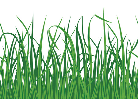 Grass background with seamless edge  Stock Vector - 7675177