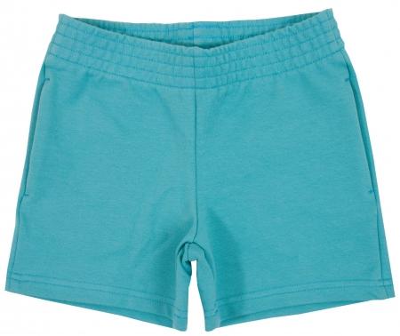 Sport shorts. Isolated on white background