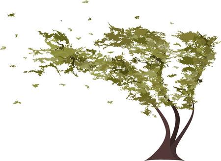 feuille arbre: Grunge arbre dans le vent. Vector illustration