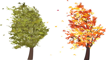gusty: Autumn and summer grunge tree in the wind. Vector illustration