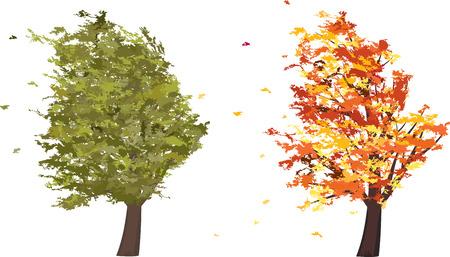 cartoon wind: Autumn and summer grunge tree in the wind. Vector illustration