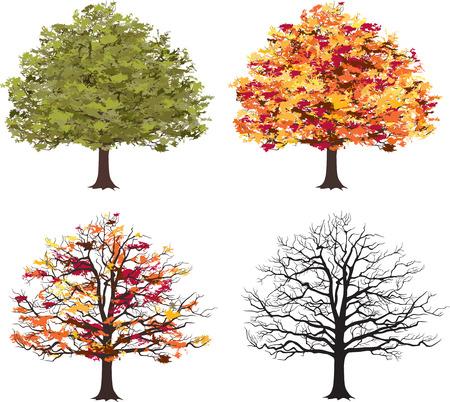 Different seasons of art tree  Vector Vector