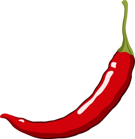 cayenne: Red Hot Chili Pepper. Vector Illustration