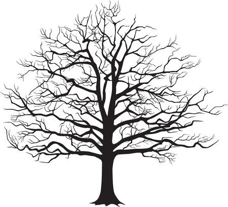 Black silhouette bare tree . Vector illustration