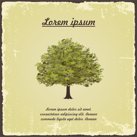 Old tree on vintage paper.  Illustration