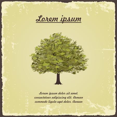 Old tree on vintage paper.  Vettoriali