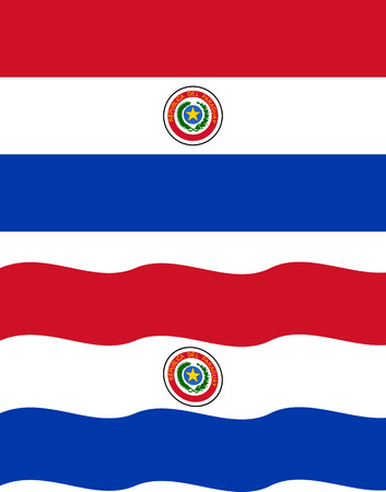 paraguayan: Flat and waving Paraguayan Flag.