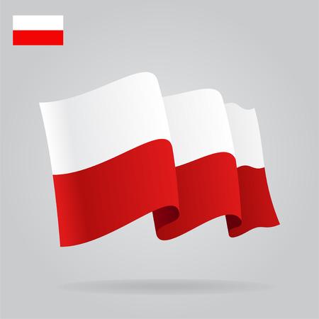 bandera de polonia: Planas y agitar la bandera polaca. Vectores
