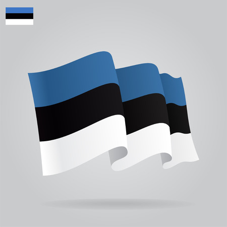 estonian: Background with waving Estonian Flag. Vector