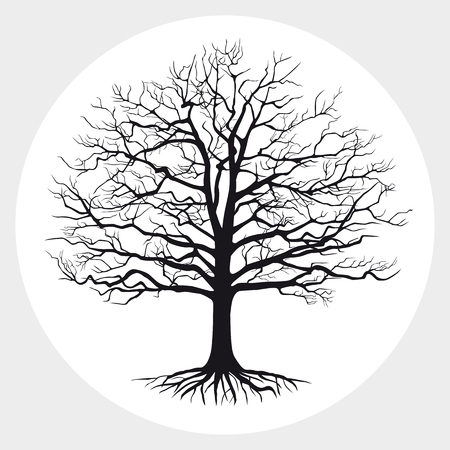Black silhouette of a tree . Vector illustration.