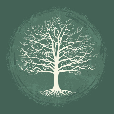 Old bare tree on vintage background. Vector illustration 矢量图像