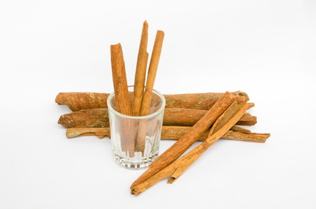 cannelle: Cinnamon sticks isolated on white background