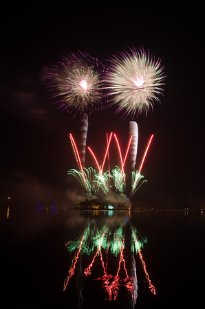 pyrotechnic displays: colorful fireworks on the black sky background