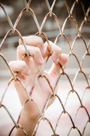 Hands with Mesh cage, Hands with steel mesh fence photo