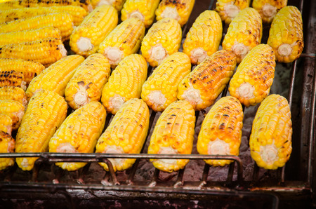 charred: A close-up of rows of charred, delicious, grilled corncobs.
