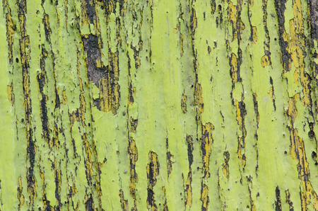 splintered: Old Shabby Wooden with cracked color Paint background