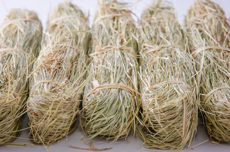 Small Bound Hay Bales or Haystacks for  small pets