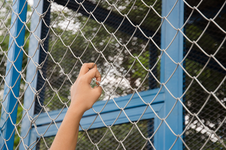mesh fence: Hands with Mesh cage, Hands with steel mesh fence Stock Photo